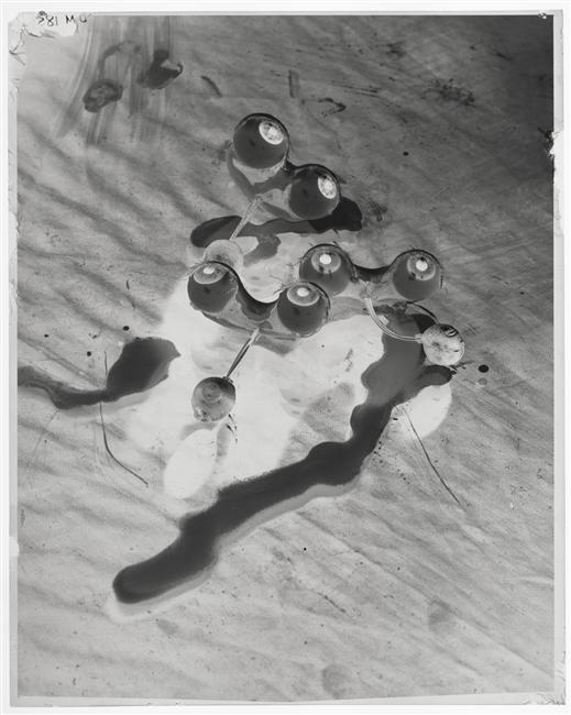 Dora Maar -Les Yeux,  negatif, serie photomontage c.1932-1935 1