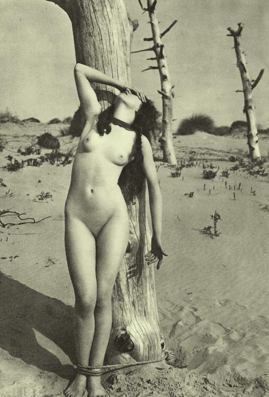 Marcel Meys- Nu ( bondage à l'exterieur), 1930 1