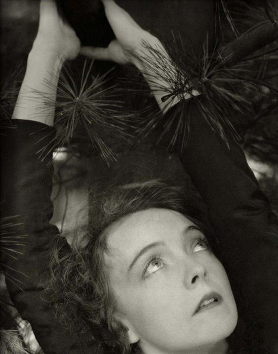 Edward Steichen- Lillian Gish with hands over her head, surrounded by pine tree, November 1934