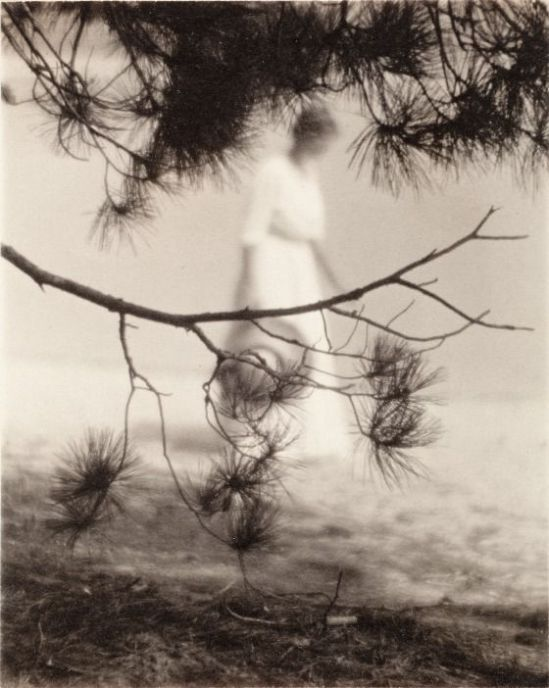 Karl F. Struss - Woman And Branch, 1912