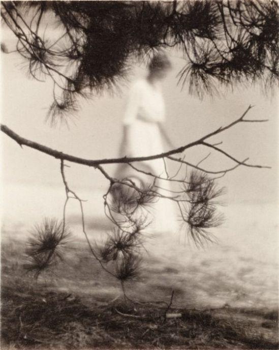 Karl F. Struss - Woman And Branch, 1912