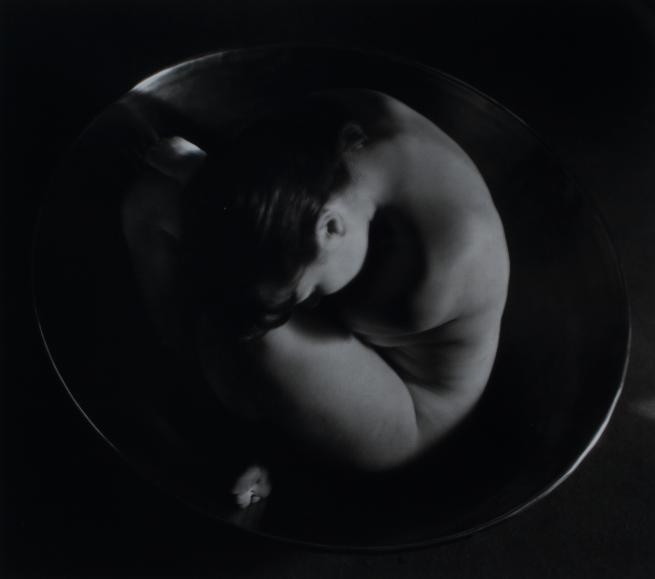 Ruth Bernhard - Embryo, 1934