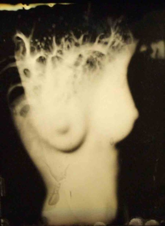 Bart Dorsa. Deep Inside My Dollhouse 2009