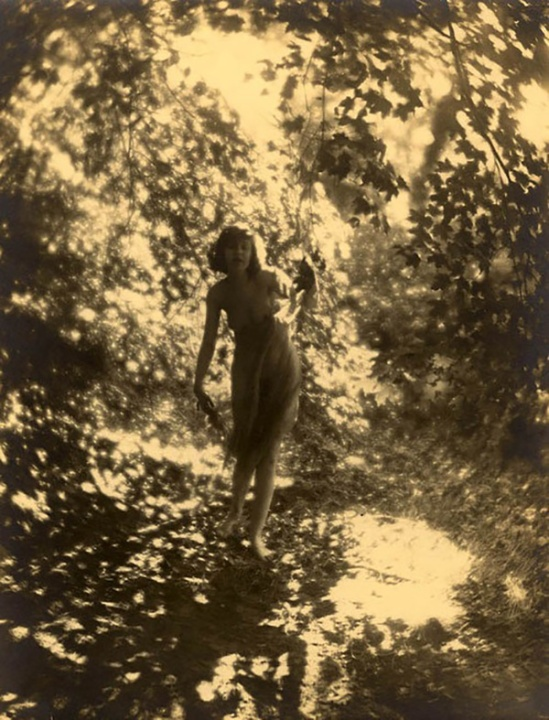 Charles J. Cook - Female Nude In Forest, 1928
