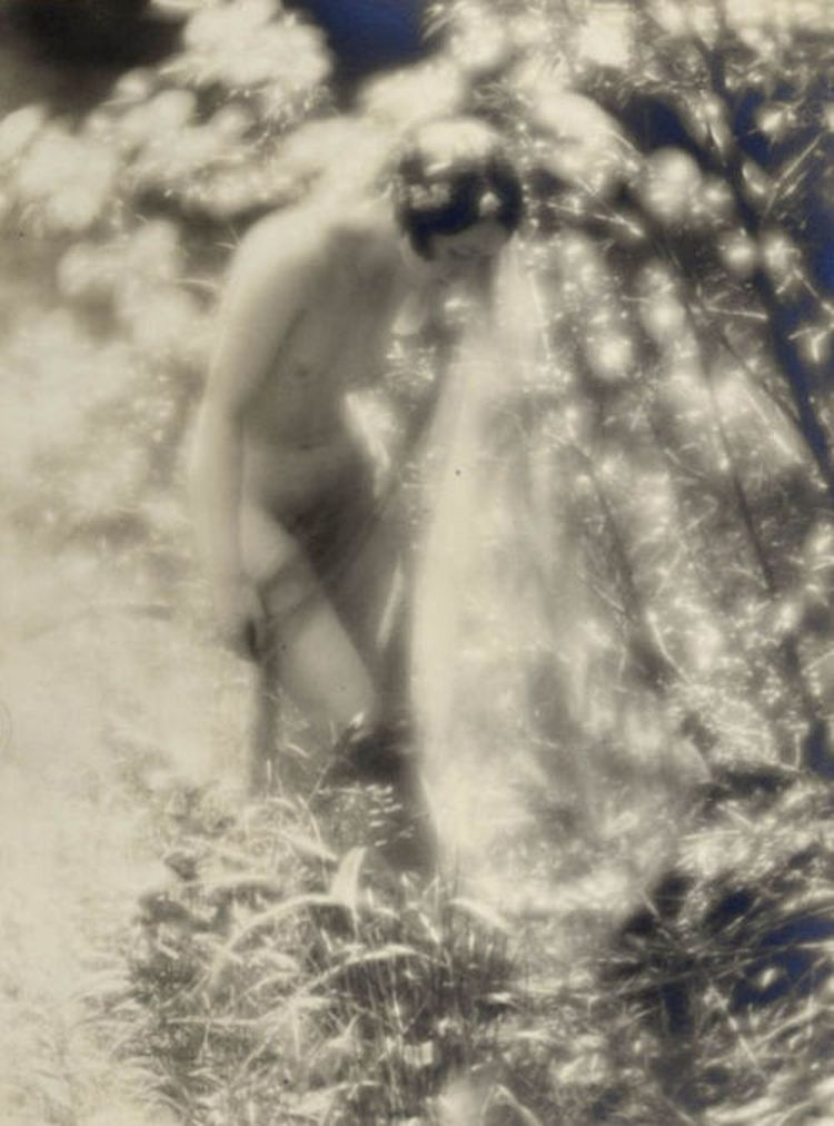 Charles J. Cook- Female Nude In Forest, 1927