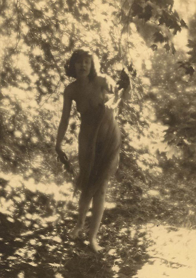 Charles J. Cook - Female Nudes In Forest ,1928