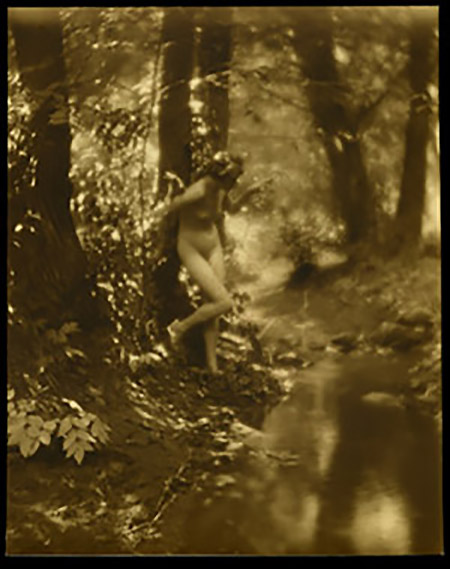 Charles J. Cook - Female Nudes In Forest 1920