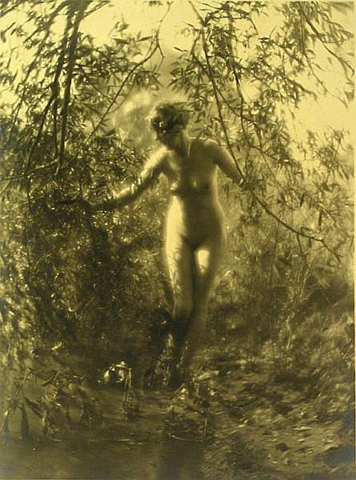 Charles J. Cook - Female Nudes In Forest SettingsOriginal 1920