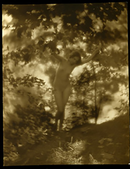 Charles J. Cook - Female Nudes In Forest, 1920