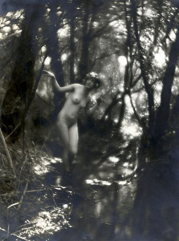 Charles J Cook - Untitled - 1910