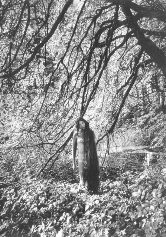 Rimantas Dichavičius From Žiedai tarp žiedų - Fleurs Parmi Fleurs 1969-1980 1