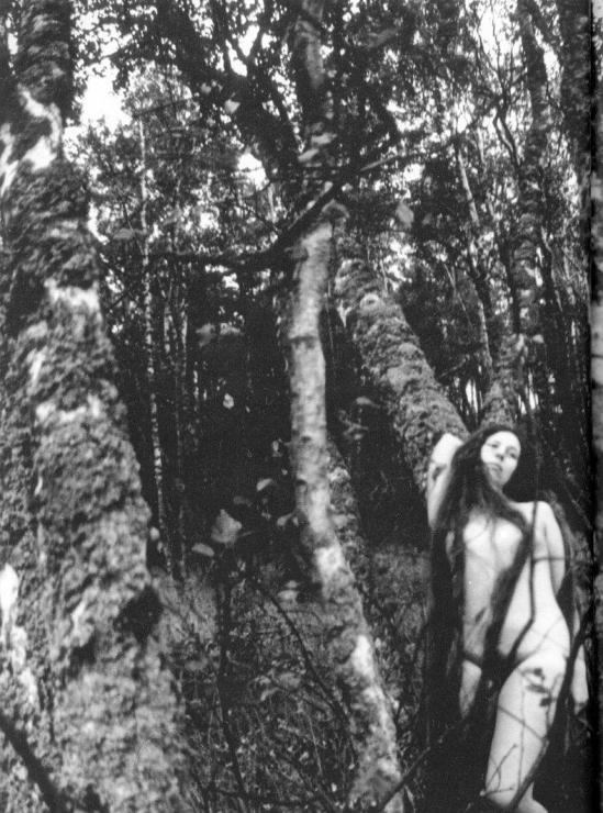 Rimantas Dichavičius From Žiedai tarp žiedų - Fleurs Parmi Fleurs 1969-1980 3