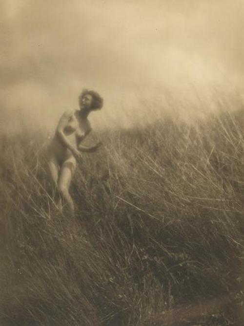 Charles J. Cook- Nude, 1910 sepia tone