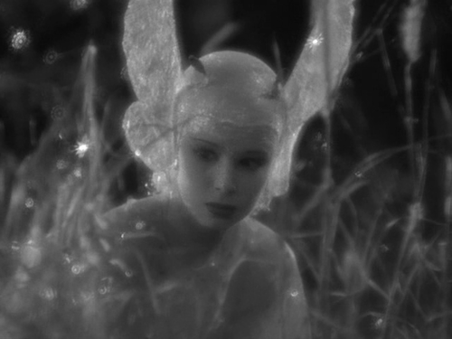 Anita Louise in A Midsummer Night's Dream- William Dieterle, Max Reinhardt, 1935 1