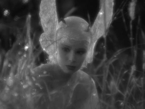 Anita Louise in A Midsummer Night's Dream- William Dieterle, Max Reinhardt, 1935 1