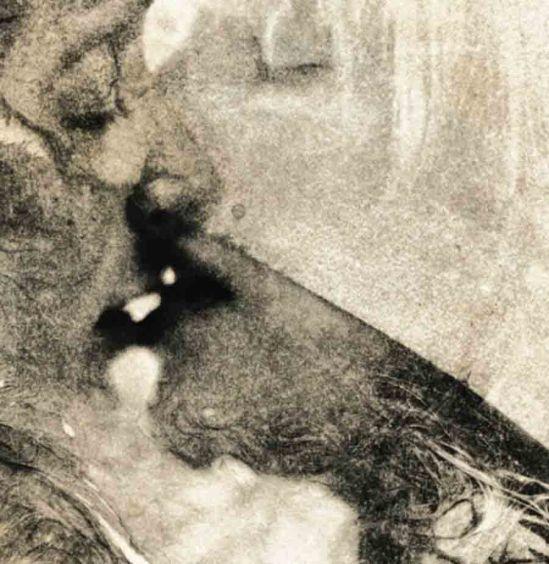 Christoper Lee Donovan -  [Fun] Sexuality, 2011