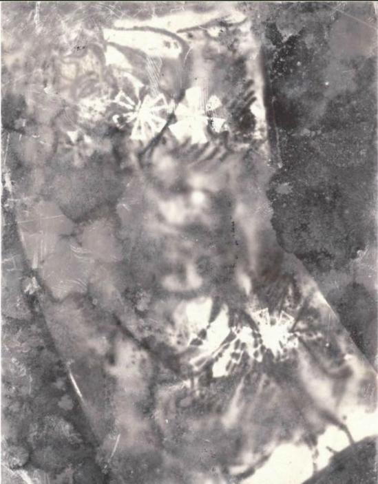 Miroslav Tichý- Photogram, nd (source Zelouna Auction House)