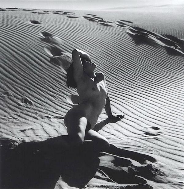 Olive Cotton- Nude, ,1937