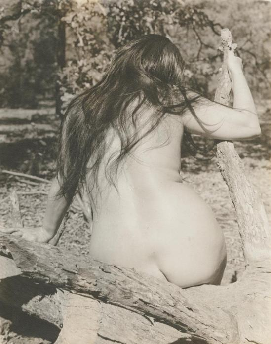 Josef Breitenbach-back of female nude with long dark hair, seated outdoors on branching log, Sept. 1961