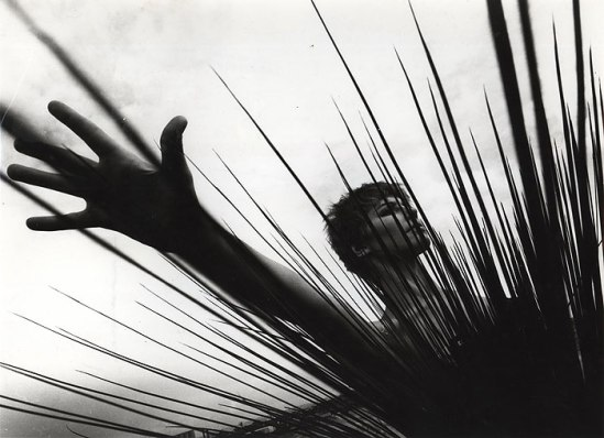 Laurence Le Guay -Model With Spiny Plant,1960s. Vintage silver gelatin print