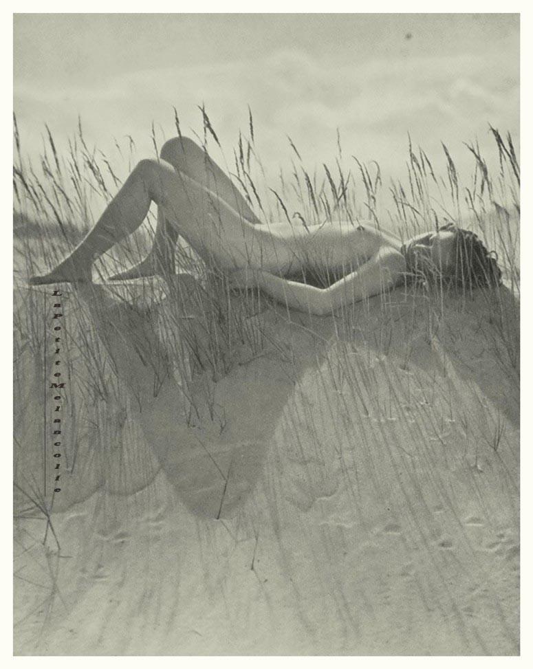 nude on the beach, by Willy Zielke #1 Portfolio Das Deutsche Aktwerk edited Bruno Schultz , ed° #2 , 1940 ( first edition in 1938)