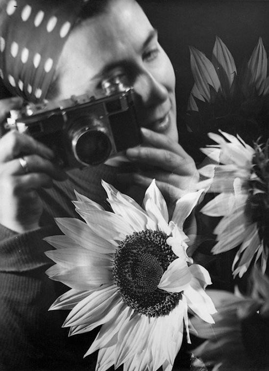 Edmund Kesting - Gerda Kesting Photographing Sunflowers (negative montage). 1930s