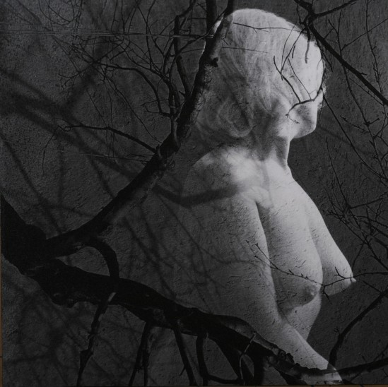 Ladislav Postupa -Memory, 2005