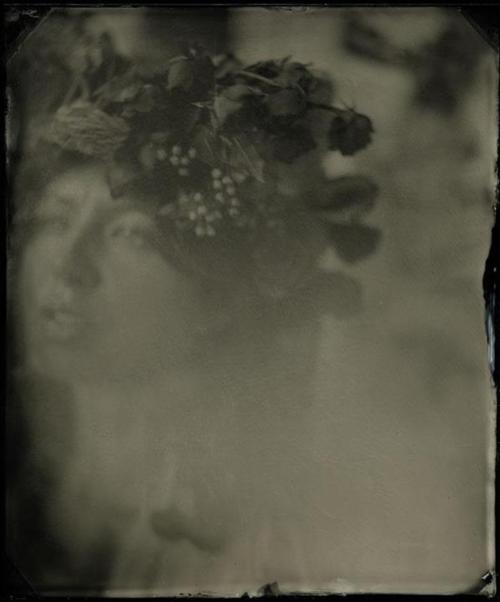 Mark Sink- Brandy dernière lumière, 2010 (plaque collodion humide)