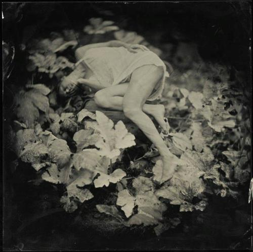 Mark Sink- Kristen dans les usines de squash (Wet Plate Collodion)