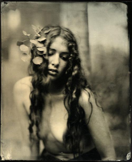 Mark Sink-Megan et Aspen feuilles, 2010 (collodion humide Plate)