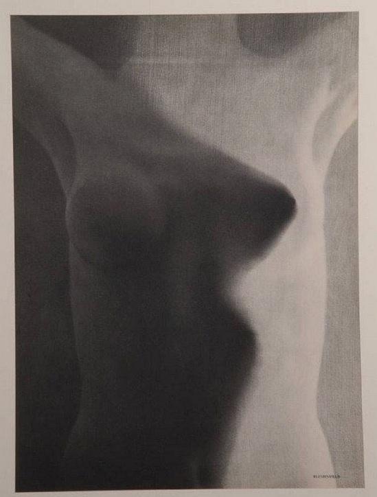 Erwin Blumenfeld Nude. Akt, publié dans verve 1938