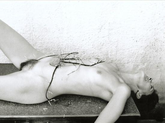 Marcel Marien - Entrer chair et terre 1991