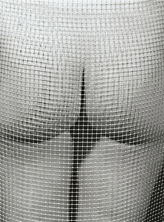 Marcel Marien - Untitled (Nude and Mesh)1985