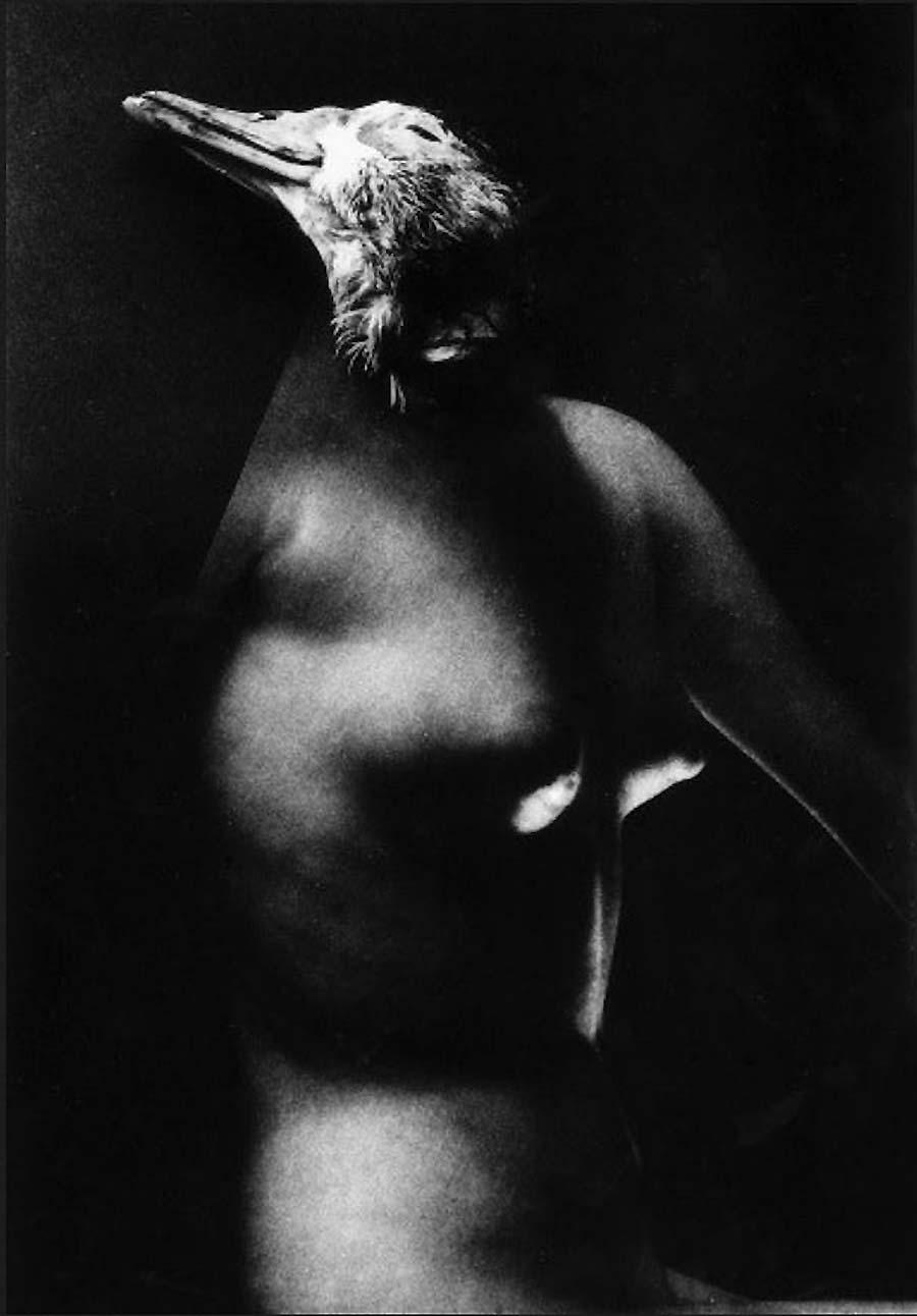 Wally Elenbaas -naakt surrealistische met het hoofd van de eend  1939-40