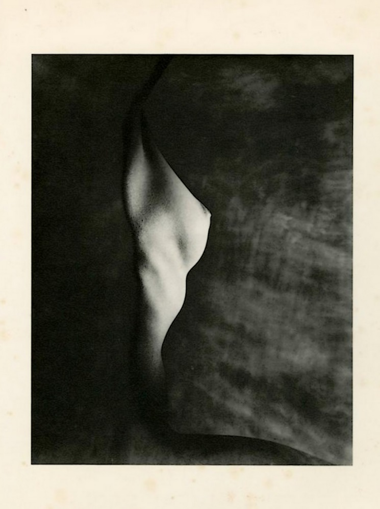 Erwin Blumenfeld - Profile of Bust ,photogravure. c1947