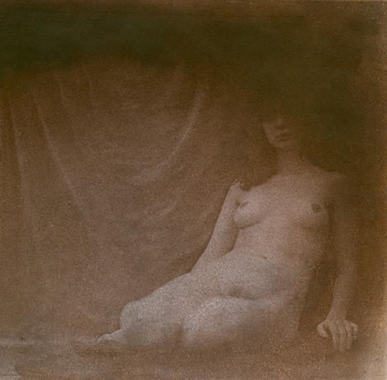 Hal Hirshorn- nude, 2011