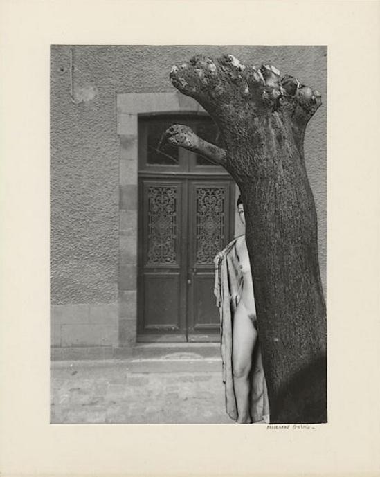 Marcel Bovis- photomontageNu féminin dissimulé en partie par un tronc d'arbre, façade de maison 1970s