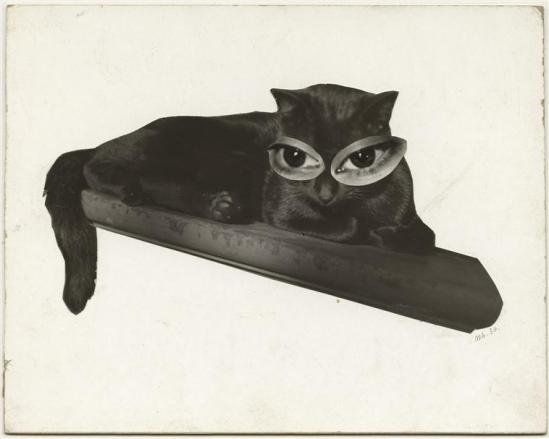 Marcel Bovis- Premier essai de photocollage , 1934