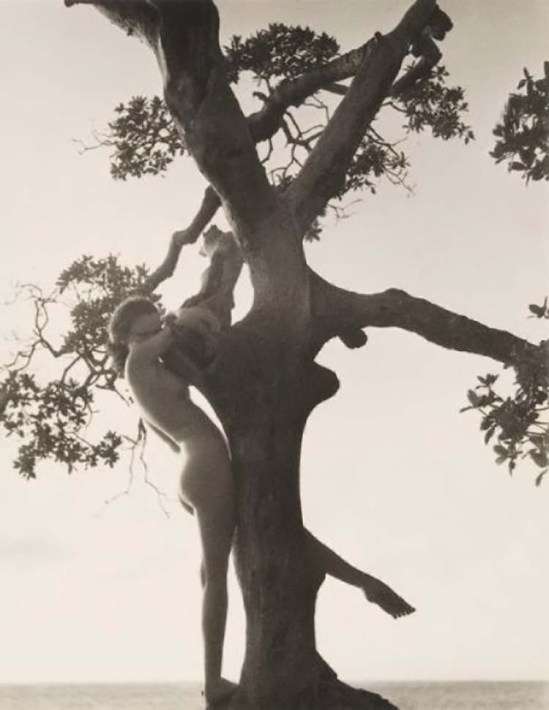 Nell Dorr- Caprice, 1929