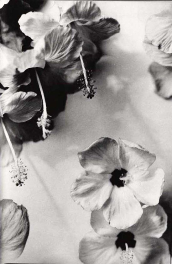 Nell Dorr from In a Blue Moon, 1939