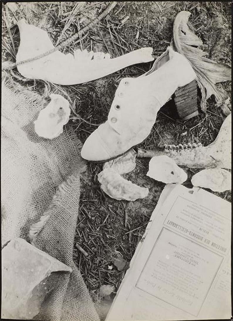 Roger Parry- Nature morte, 1929