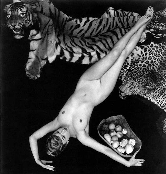 Zoltán Verre Femme étude de nu ,, 1953 (Pamela Vert)