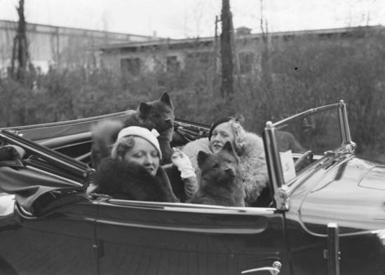 Zoltán Glass-Deux femmes et leurs chiens dans une voiture 1933.