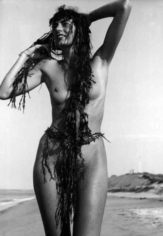 Herbert Matter - Mercedes, Nude, 1940