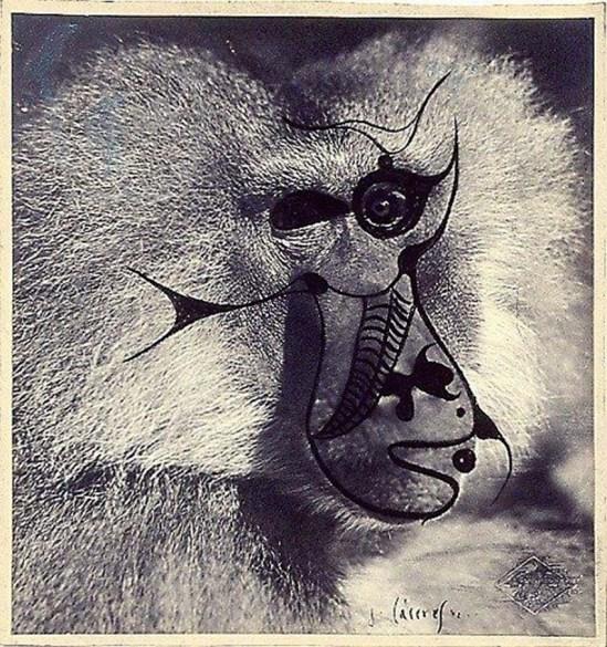 Jorge Caceres - Portrait (Dessin à l'encre sur photographie) 1942 ( André Breton& & mandragora)
