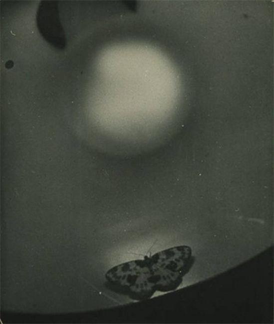 Osamu Shiihara,- Sans titre , 1930sThe National Museum of Modern Art, Tokyo