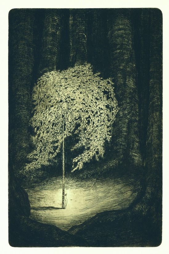 František Drtikol- Untitled ( Tree of live) etching, 1910-20