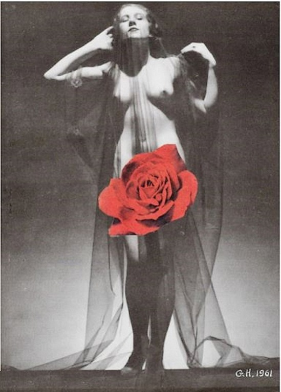 Georges Hugnet- Sans titre (rose rouge) , 1961. Collection Denise Levy