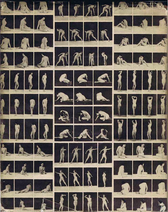 John Everard- From Artit's Model, Ed° The Bodley Head, 1951