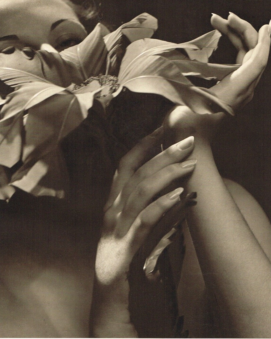 John Everard -Study (Lady Woman's Hands with flower) photogravure 1940